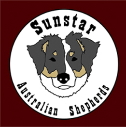 Sunstar Australian Shepherds